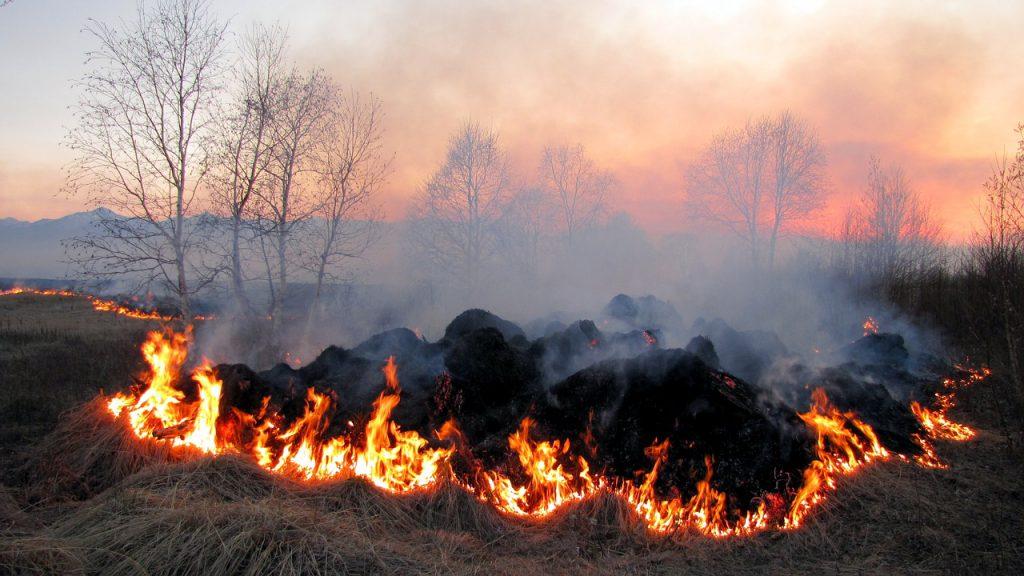 Fuego en el campo
